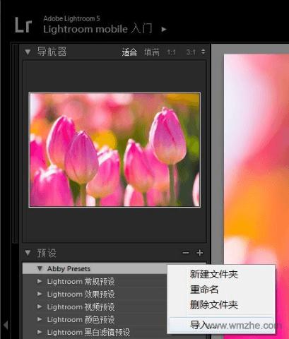 Adobe Photoshop Lightroom 32位软件截图