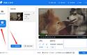 整理了两种视频去水印的方法,简单+高效+方便