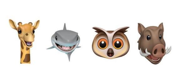 iOS 12.2 beta 4已发布,更新了这几个方面