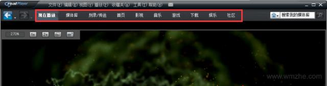 RealPlayer軟件截圖