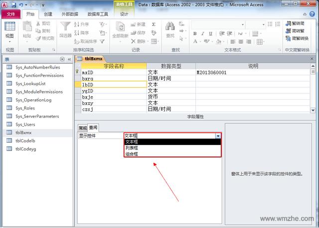 Access2007 sp3软件截图