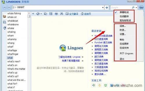 灵格斯词霸软件截图