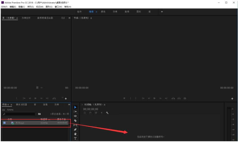 Premiere视频调色处理,将彩色画面转变成黑白色