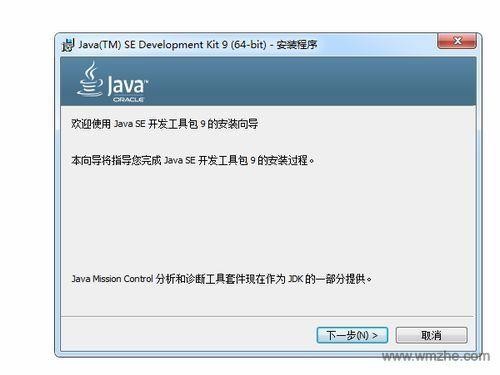 Java(TM) 9 64位软件截图
