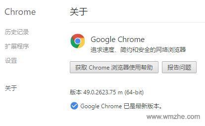 谷歌浏览器软件截图