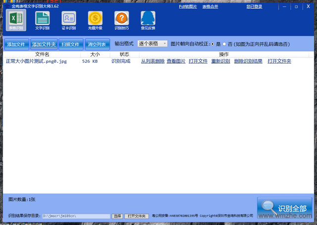 金鳴文表識別系統軟件截圖