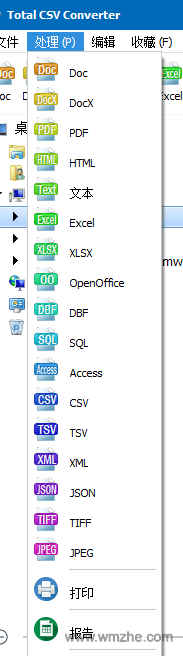 Total CSV Converter软件截图