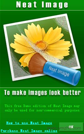 Neat Image软件截图