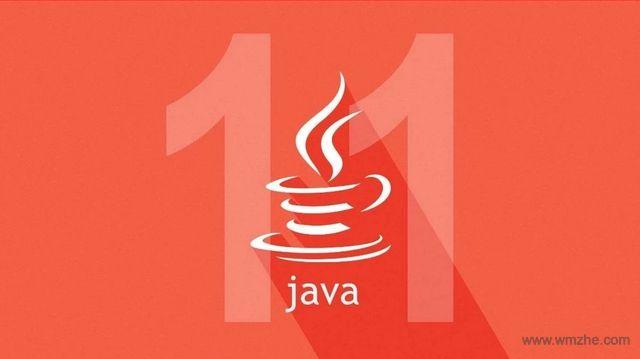 JDK(TM)11 64位软件截图