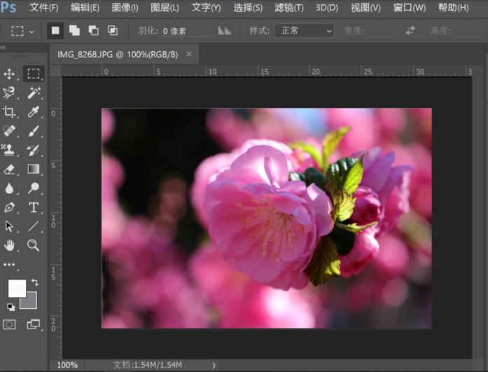 体验PS自动调色功能,图片处理又快又方便