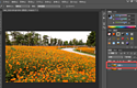PS修圖之處理偏色圖片,簡單+易學+高效