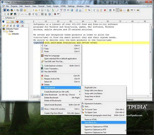 PSPad editor软件截图
