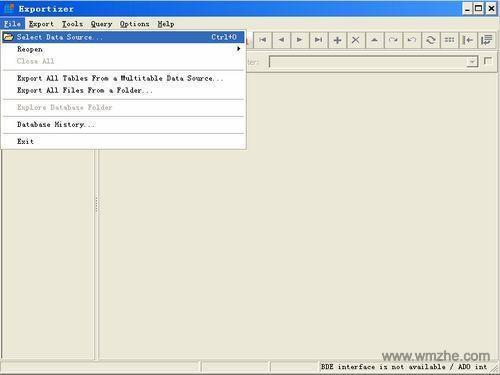 Exportizer软件截图