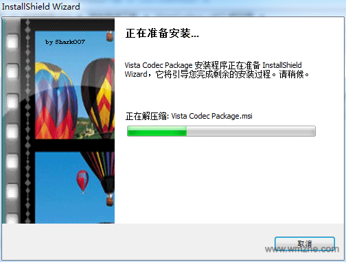 Vista Codec Package軟件截圖
