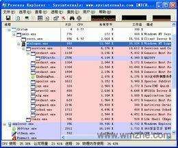Process Explorer软件截图