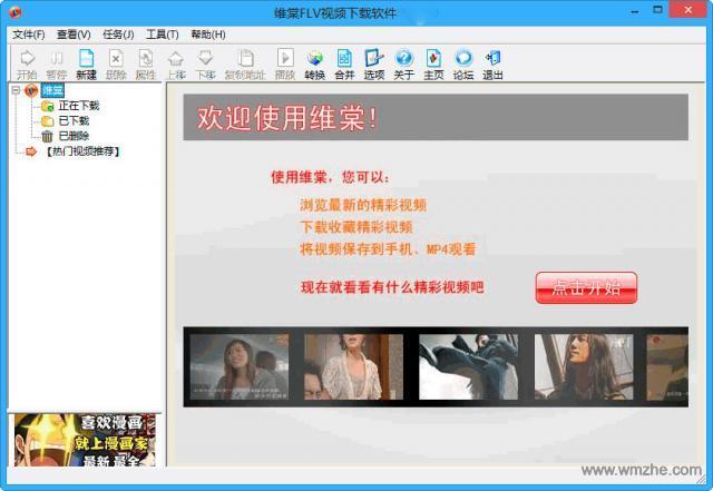 维棠FLV视频下载软件软件截图