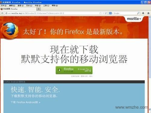 火狐便携版软件截图