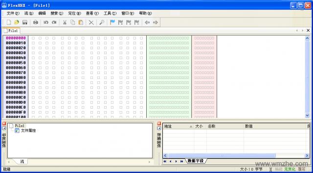 FlexHEX Editor软件截图