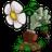 植物大战僵尸魔幻版 V 1.0.0.1051 魔幻版