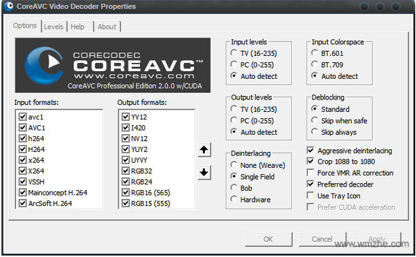 CoreAVC Video Professional Editio軟件截圖