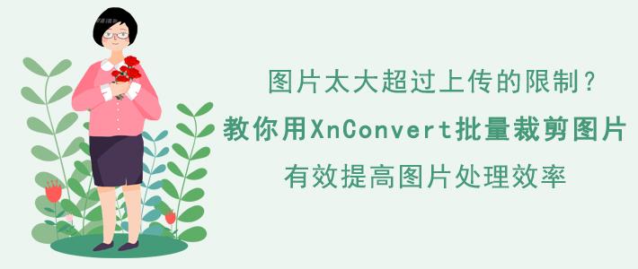 如何使用XnConvert批量裁剪图片?节省时间、提高效率