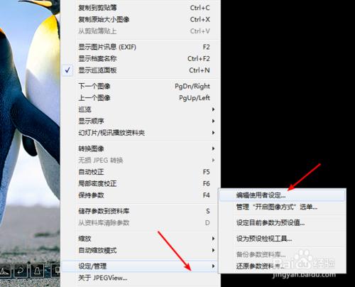 设置图片浏览工具JPEGView打开图片默认窗口模式