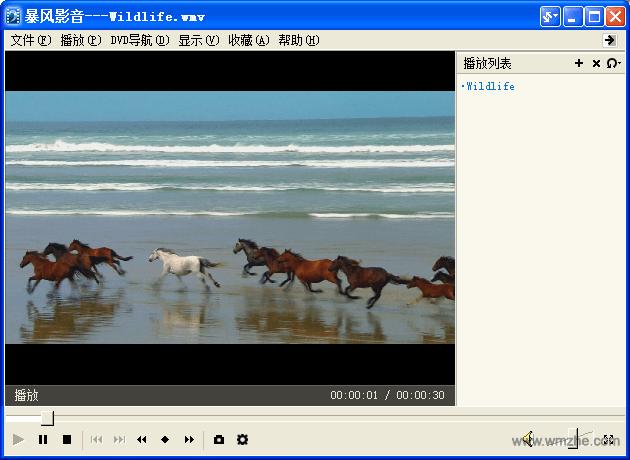 暴風影音3軟件截圖