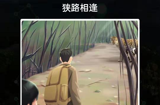 与豹子相遇应该怎么做