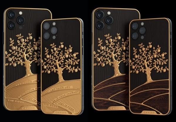 定制iPhone 12 Pro