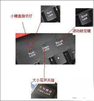 键盘上的三个灯是什么意思?键盘上的三个灯有什么用?(1)