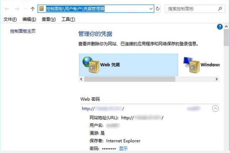 win10怎么查看Edge浏览器保存的密码