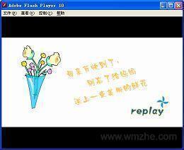 Adobe Flash Player独立播放器软件截图