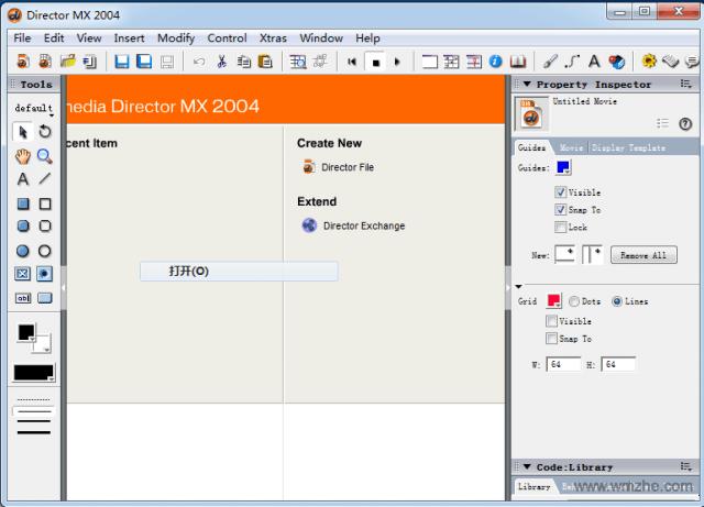 Macromedia Director MX 2004软件截图